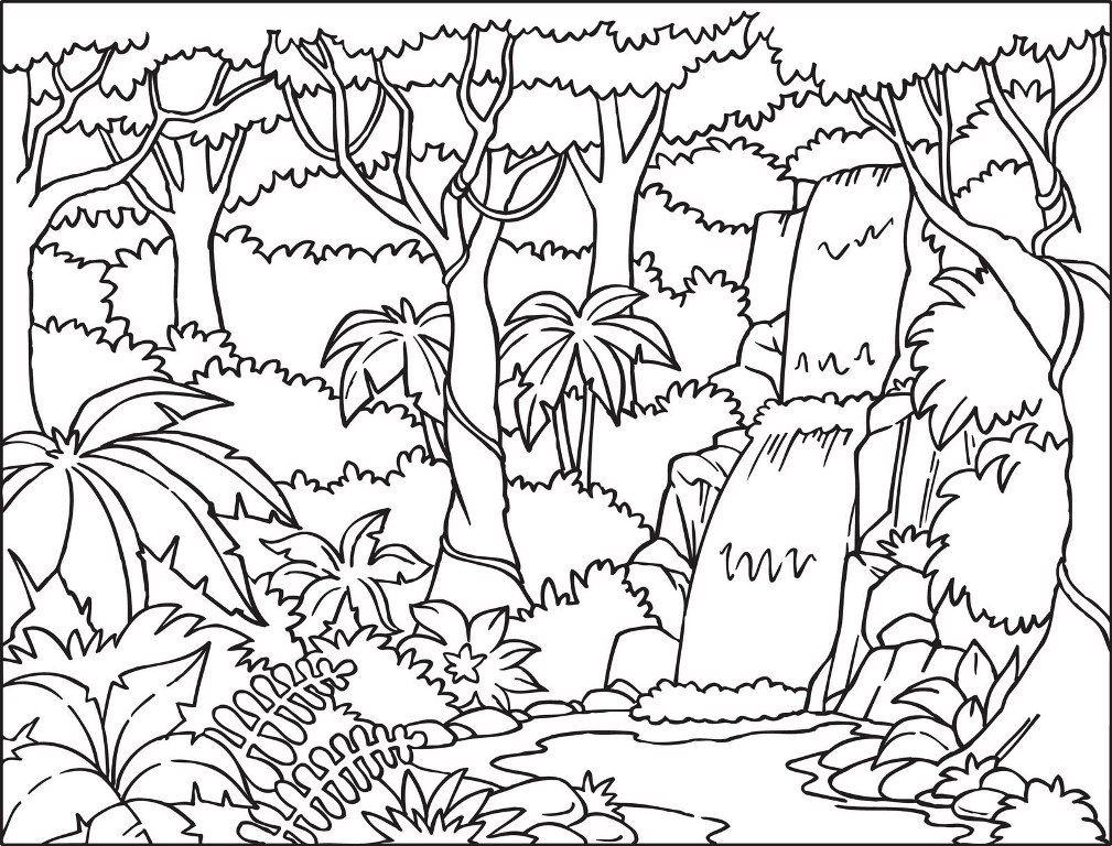 صفحات تلوين الغابات